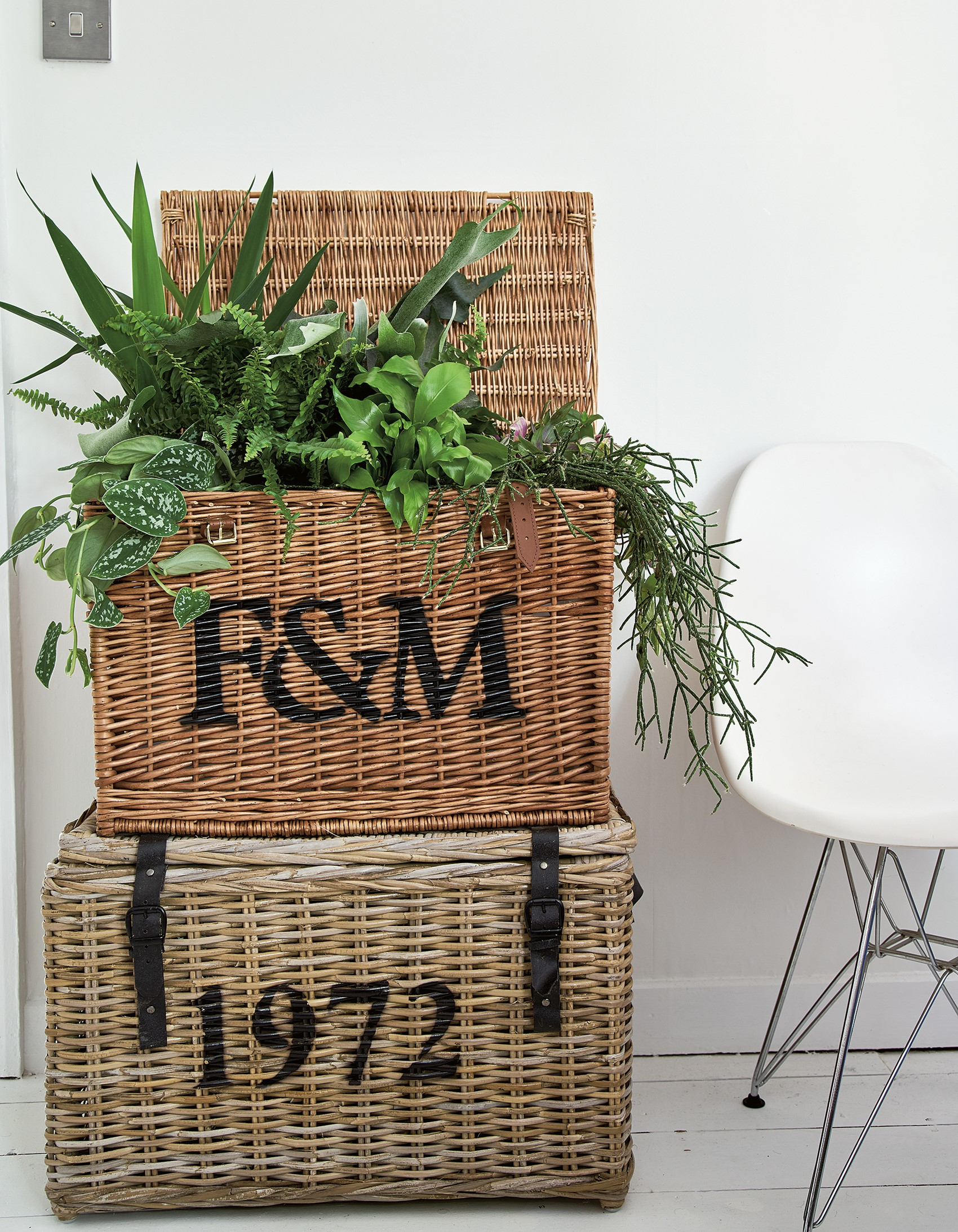 Vintage hampers used to display plants, including a heart-leaf philodrendron; ferns and chain cactus featured in At Home With Plants (Nick Pope/Mitchell Beazley/PA)