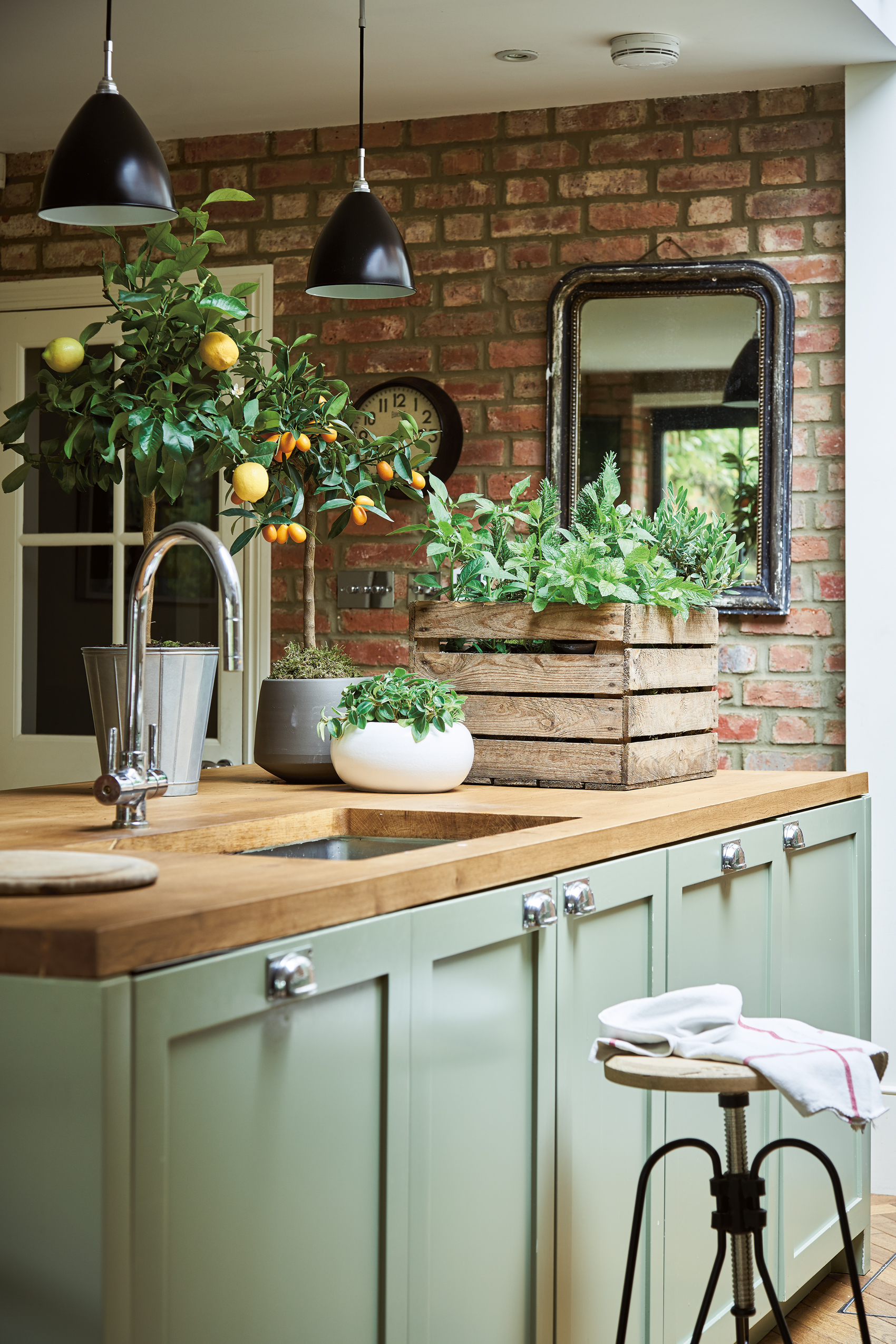 Create your own indoor kitchen garden with a selection of edible plants such as kumquat; calamondin orange; mixed herbs and chilli pepper. Room featured in At Home With Plants (Nick Pope/Mitchell Beazley/PA)