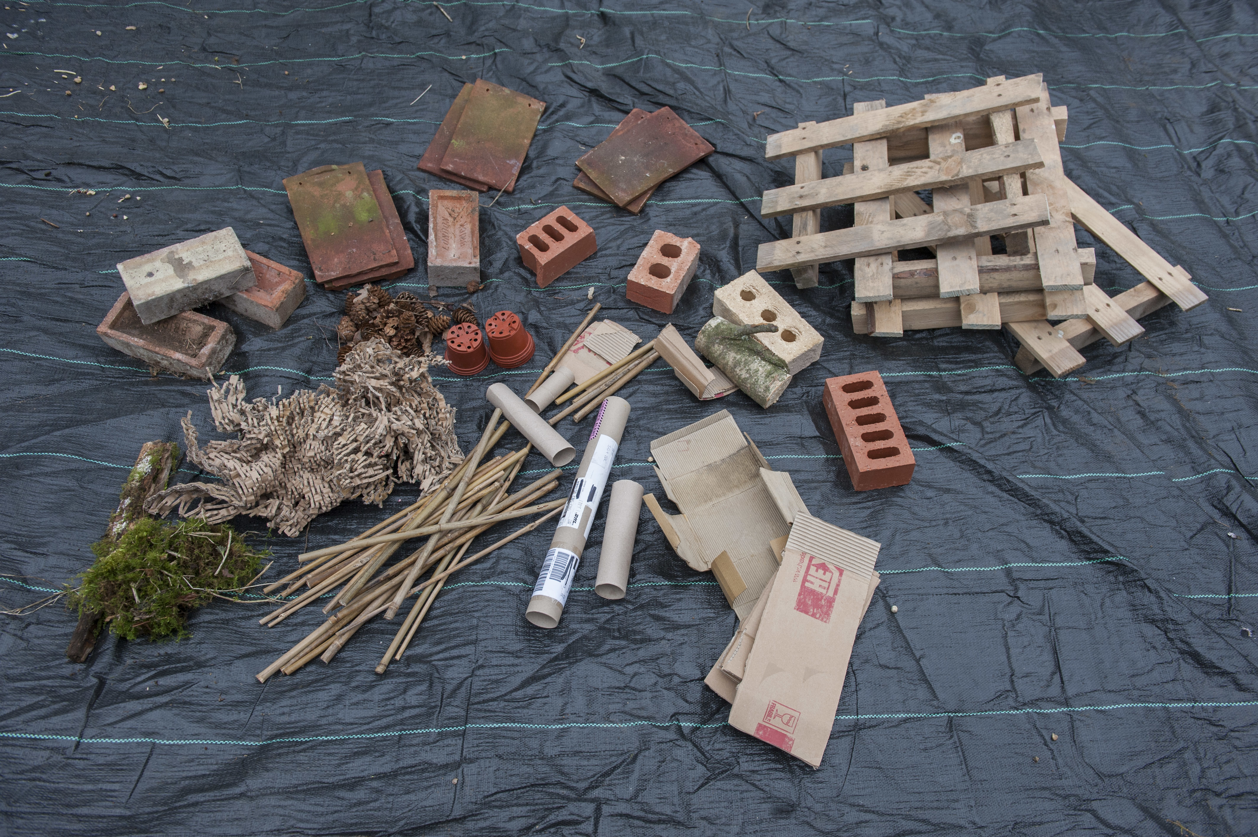 Bug hotel components (RSPB/PA)