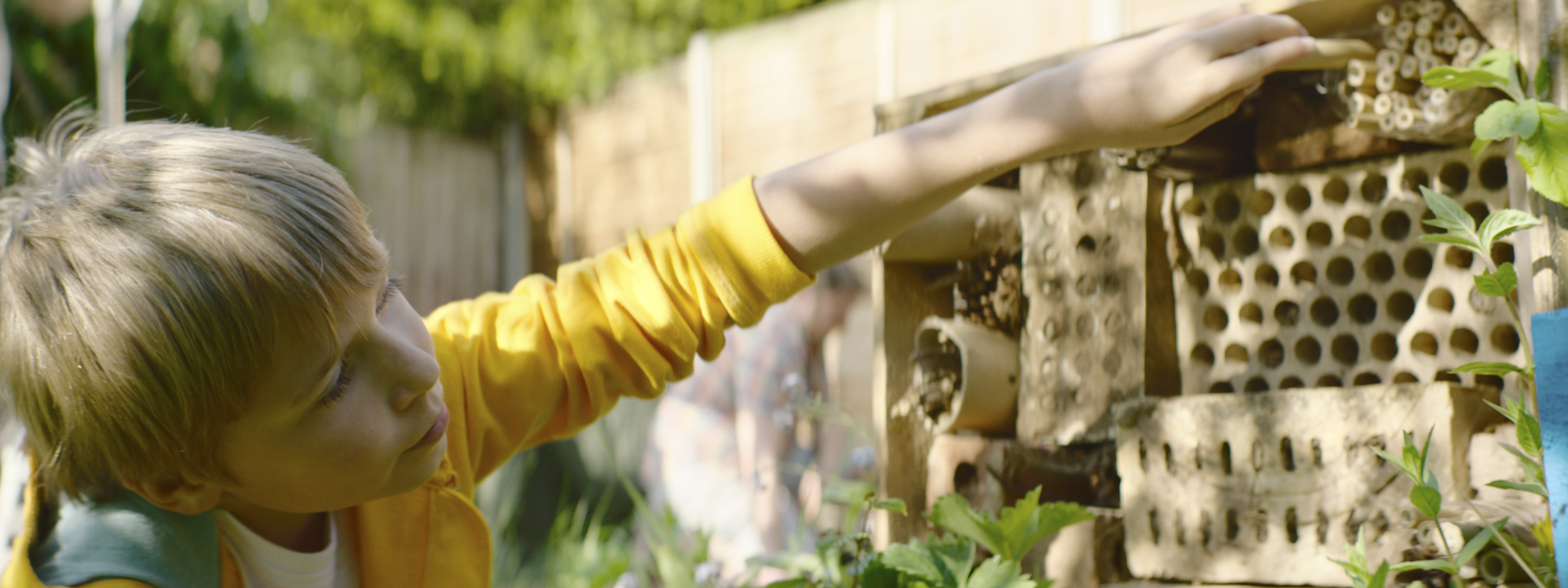 How To Build Your Own Bug Hotel Bt