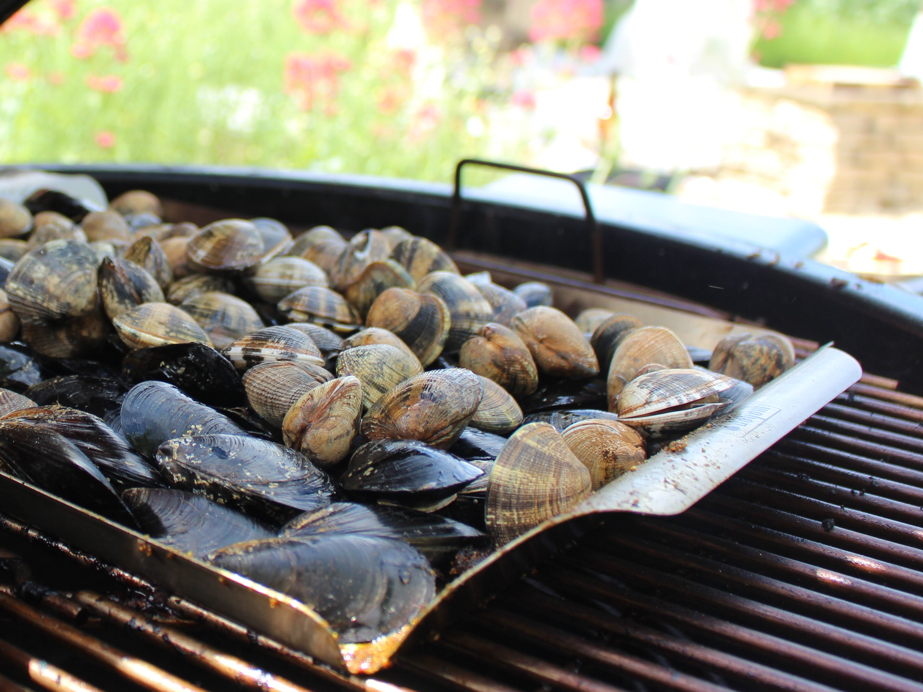 Mussels on a barbecue (PA)