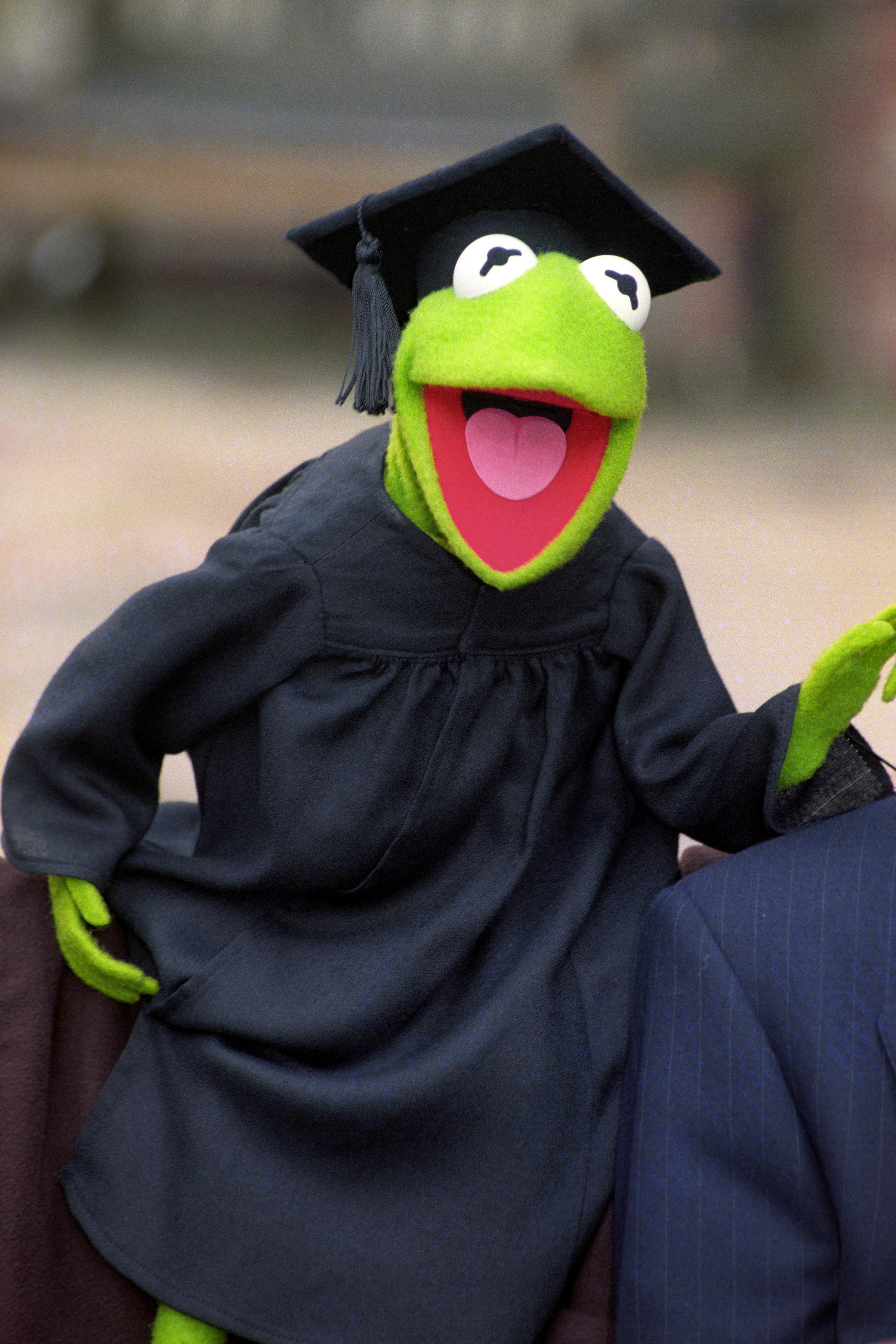 Kermit the frog puppeteer devastated to be sacked after for Frog agency