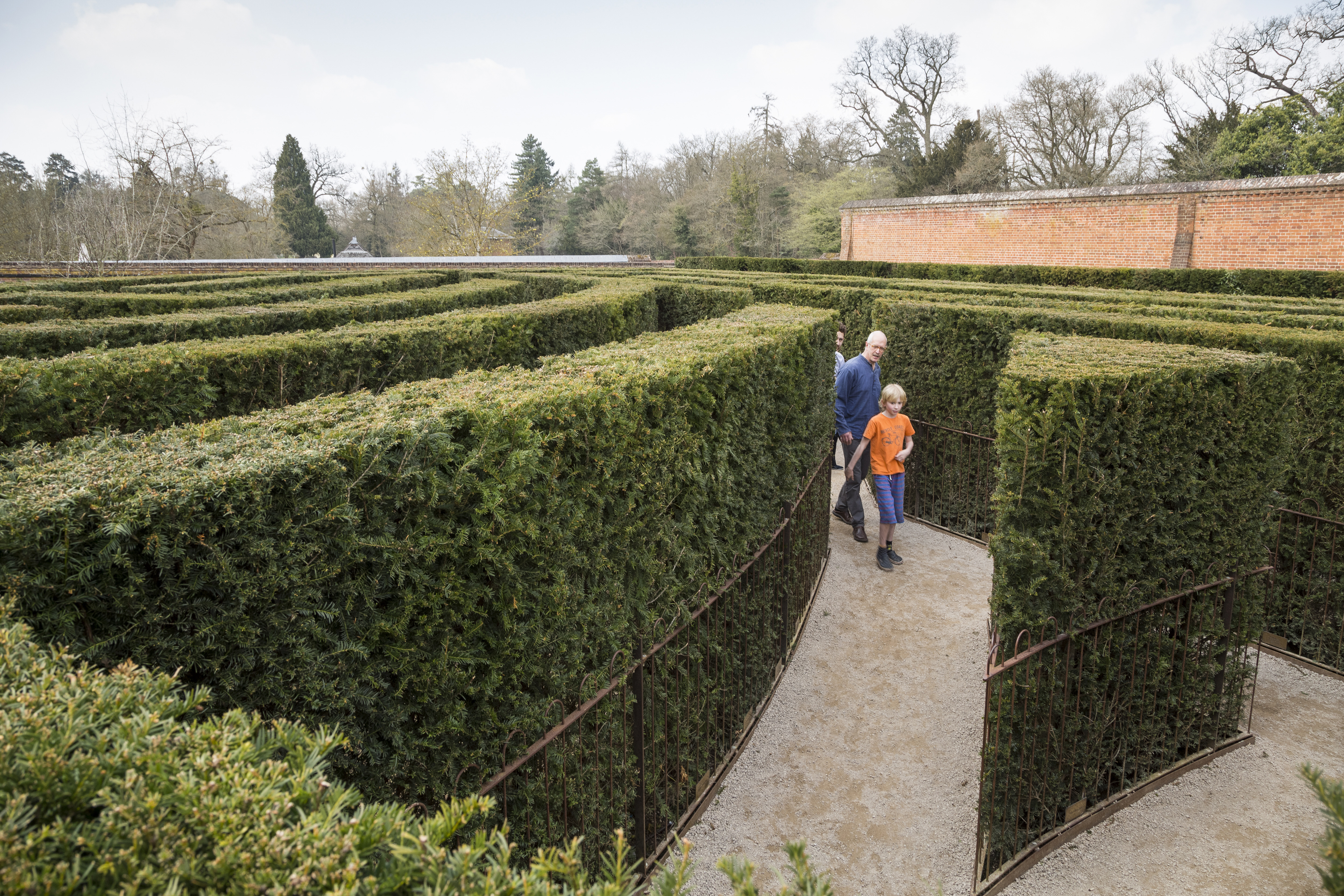 Get lost in the maze at Cliveden (Chris Lacey/National Trust/PA)
