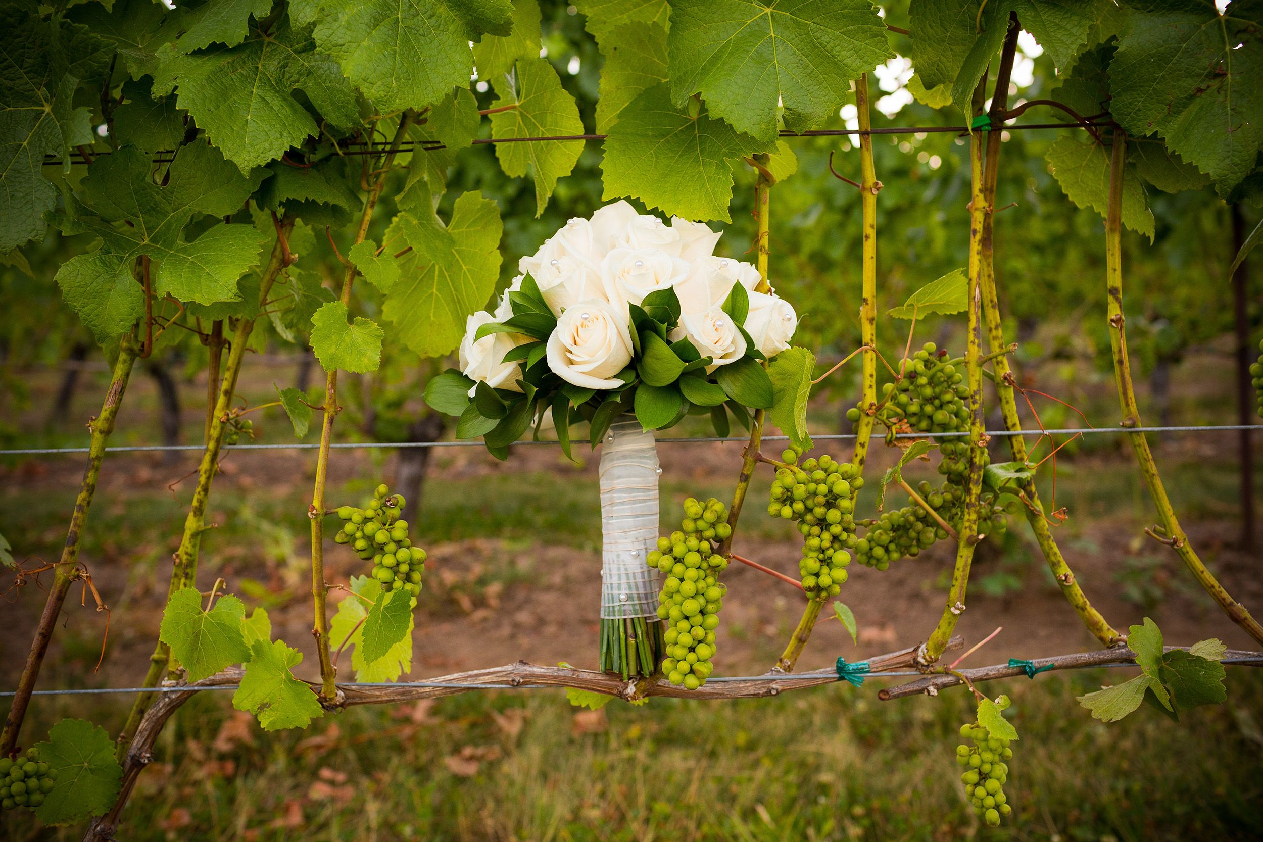 Mixed bouquet in a vineyard (Corney & Barrow/PA)