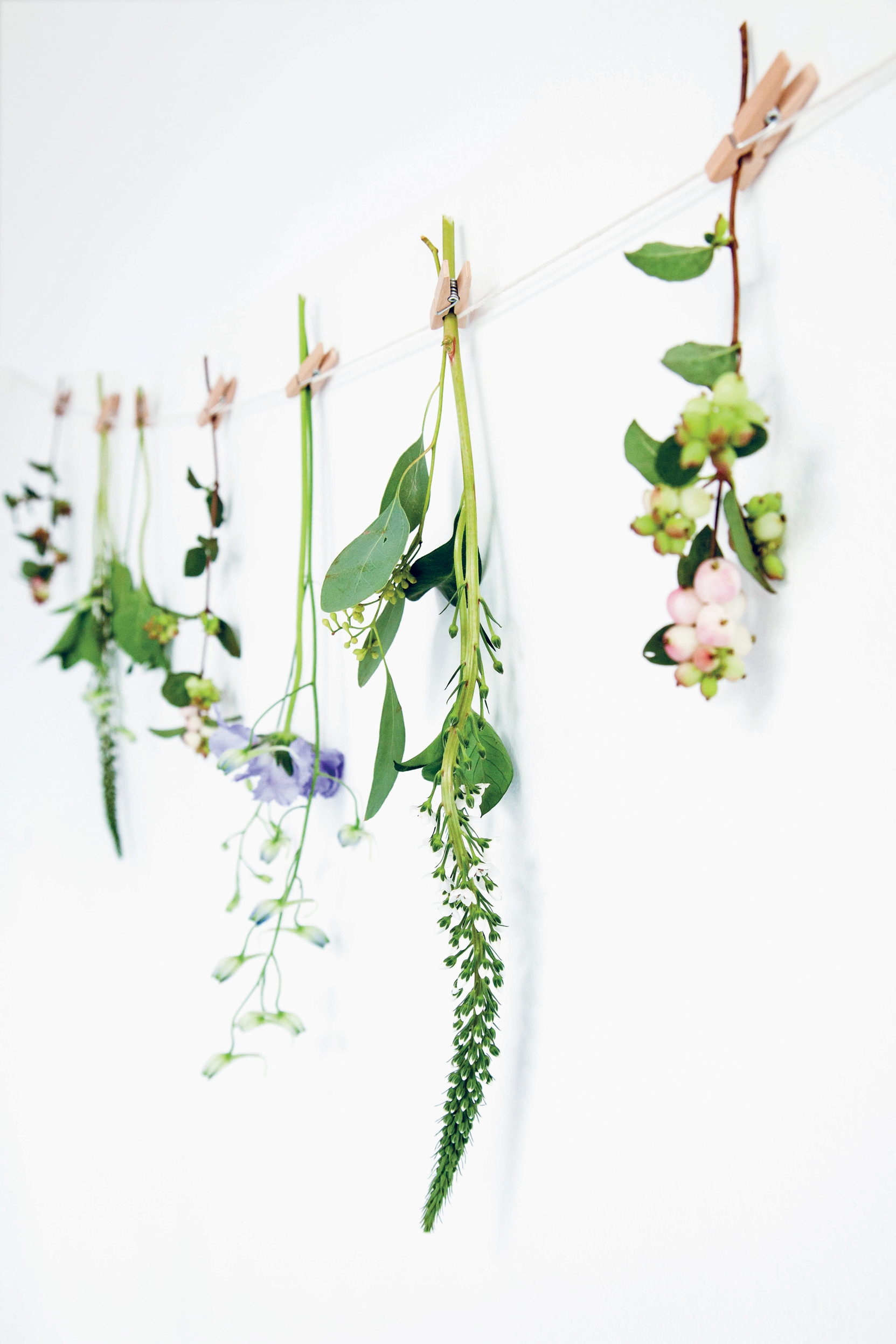 A line of cotton string tacked on a wall is hung with small sprigs of leaves, flowers, berries and pods attached by miniature clothes pegs (Decorate For A Party/Jacqui Small/PA)