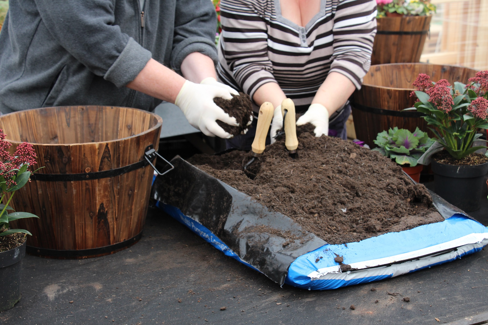 Add compost (Squire's Garden Centres/PA)