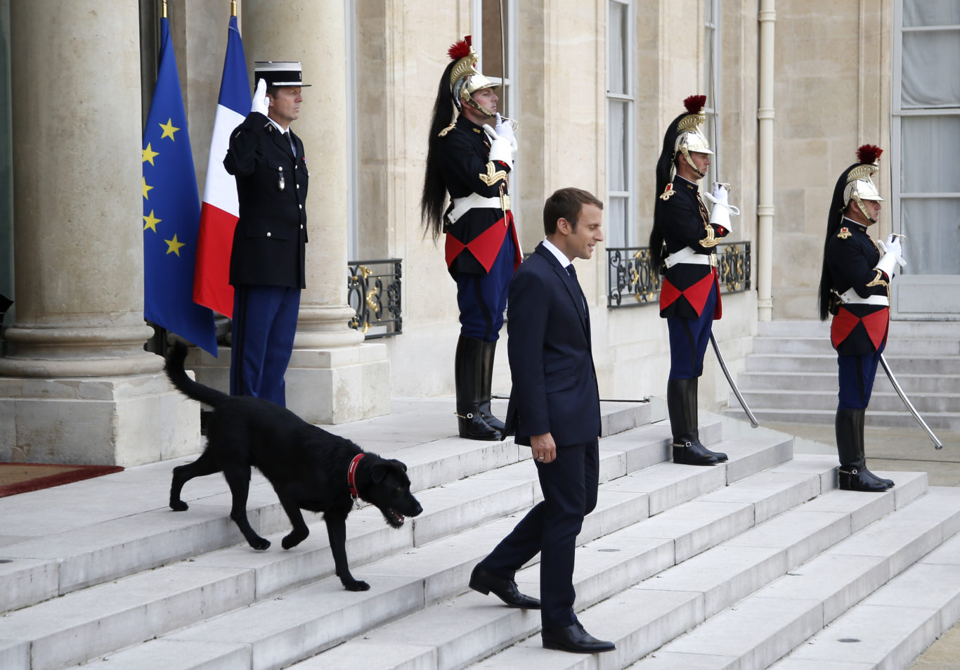 Nemo follows Macron down the steps (Thibault Camus/AP)