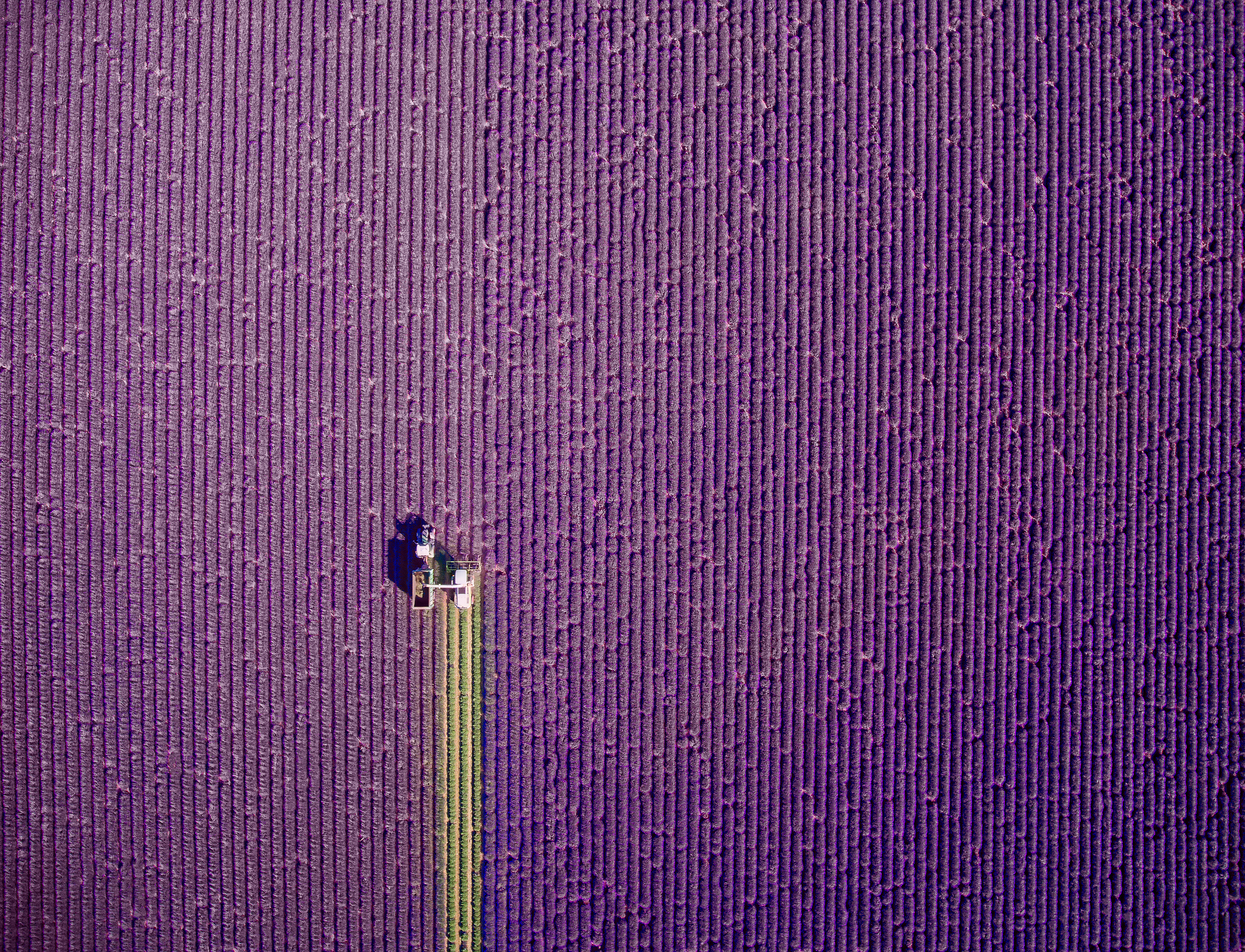 Provence summer trim by Jerome Courtial (Jerome Courtial @jcourtial/Dronestagram)