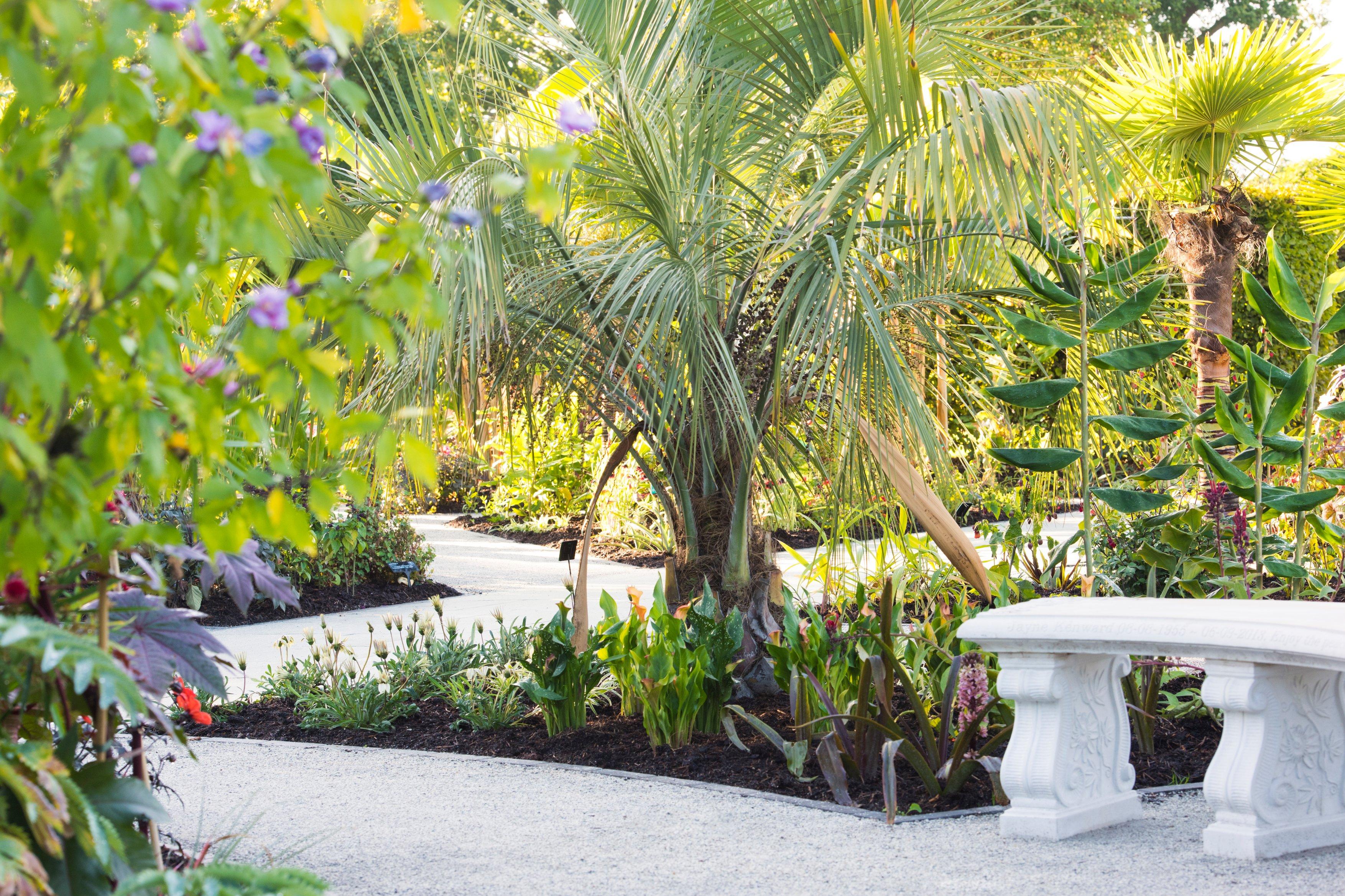 The Exotic Garden RHS Wisley Joanna Kossak PA