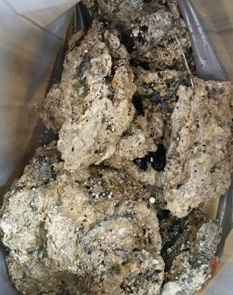 The Whitechapel fatberg