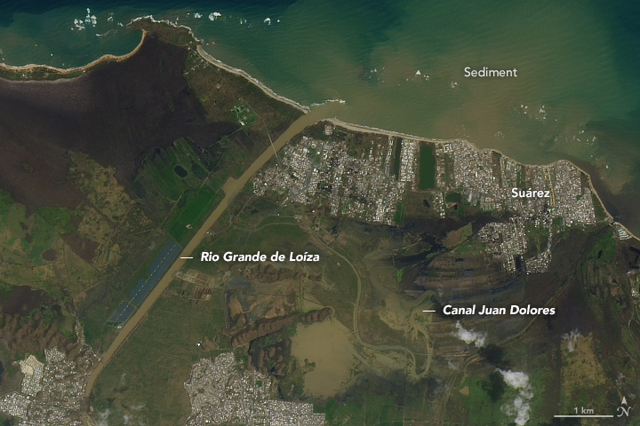 A picture of Puerto Rico on September 26, 2017 after Hurricane Maria destroyed much of the vegetation on the island and left it covered in mud and debris (Nasa Earth Observatory)