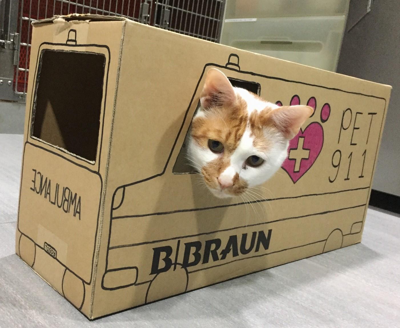 Tisoy's Ambulance