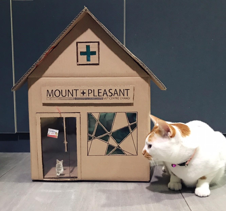Tisoy's vet clinic