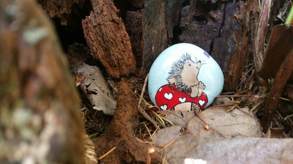 A hedgehog on a painted rock hidden by Kathy Fournier in Washington State.