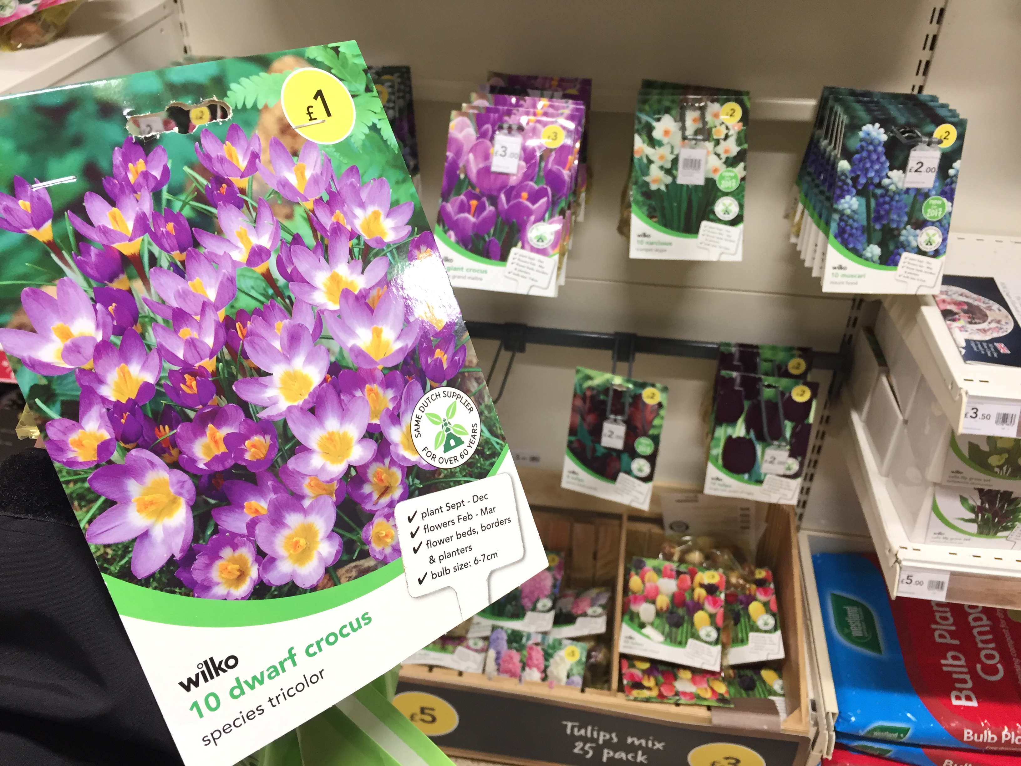 A £1 pack of spring bulbs (PA)