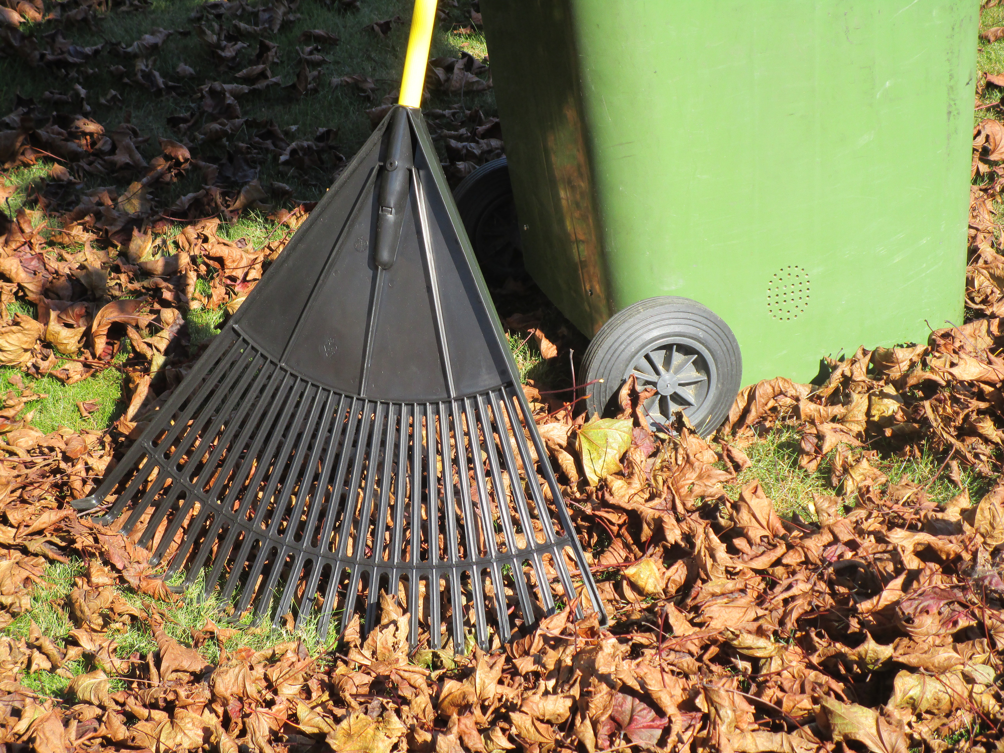 Raking leaves (Thinkstock/PA)