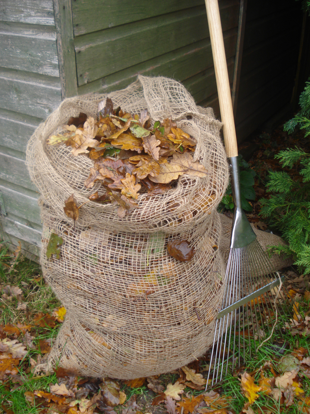 Leaf composting sacks (Burgon and Ball/PA)