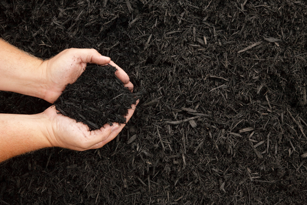 Leafmould mulch (Thinkstock/PA)