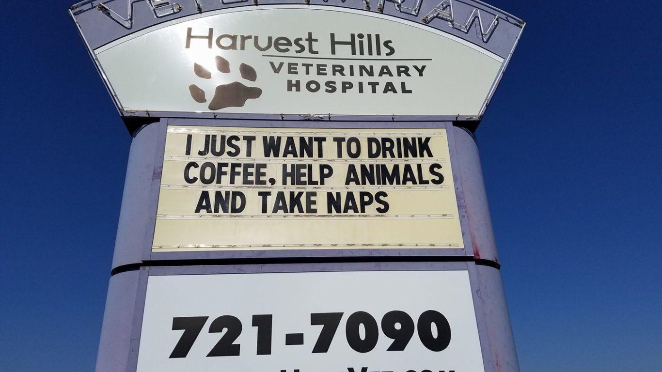 (Harvest Hills Veterinary Hospital/PA)
