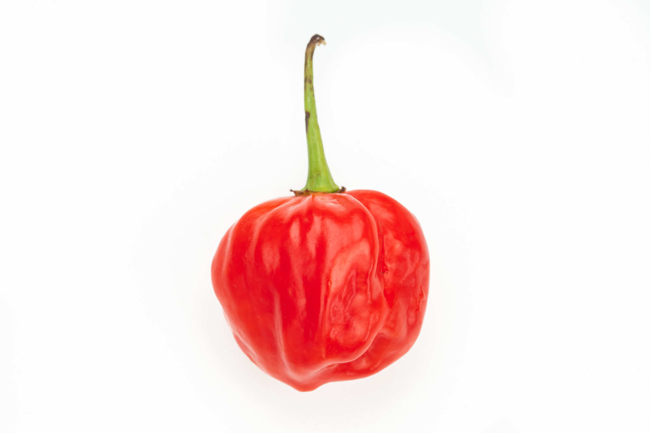 Scotch bonnet chilli pepper (Wavebreakmedia/Getty Images)