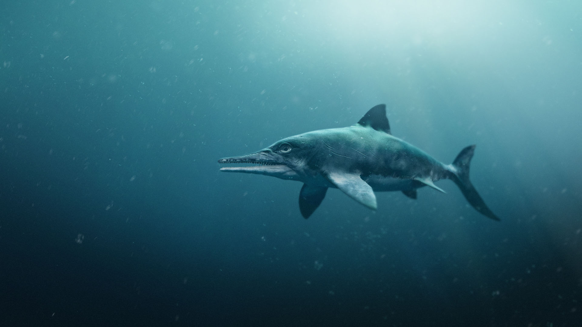 An icthyosaur (BBC Pictures/PA)