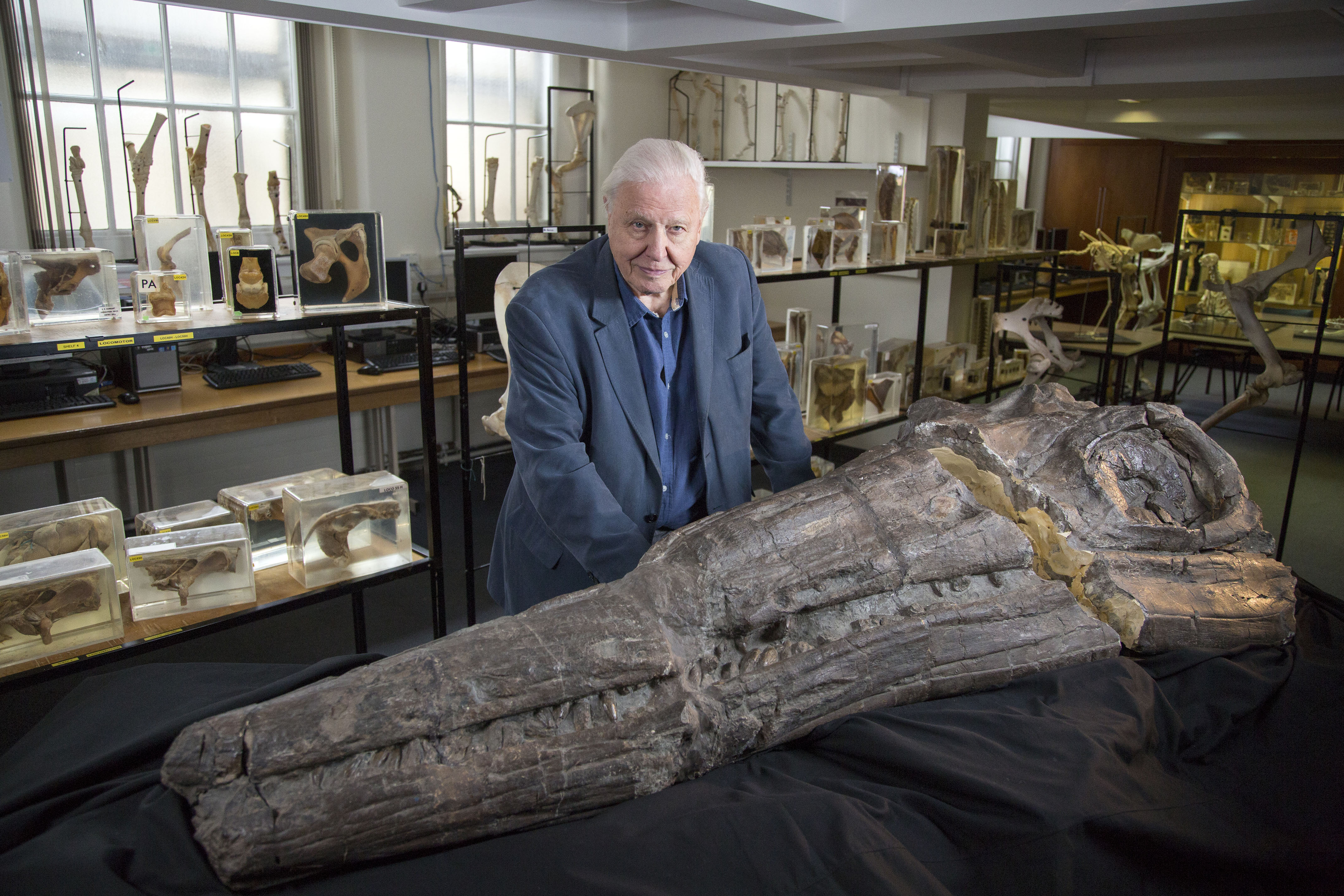 Attenborough with a fossil
