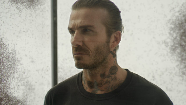 David Beckham is urging for 'bold action' against malaria