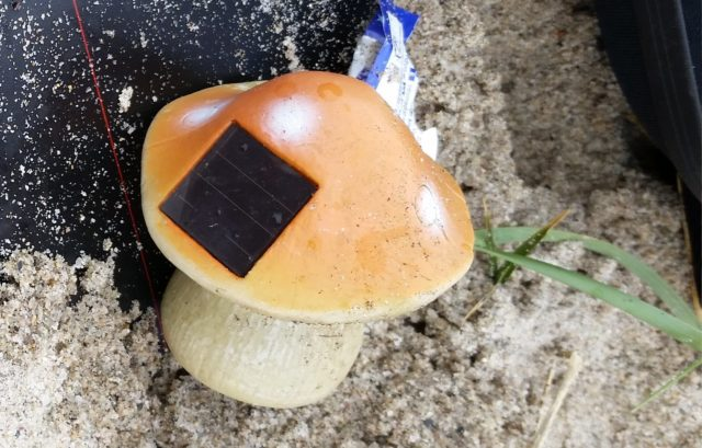 Among the more unusual things found on British beaches is a solar panel mushroom (The Plastic Tide/PA)