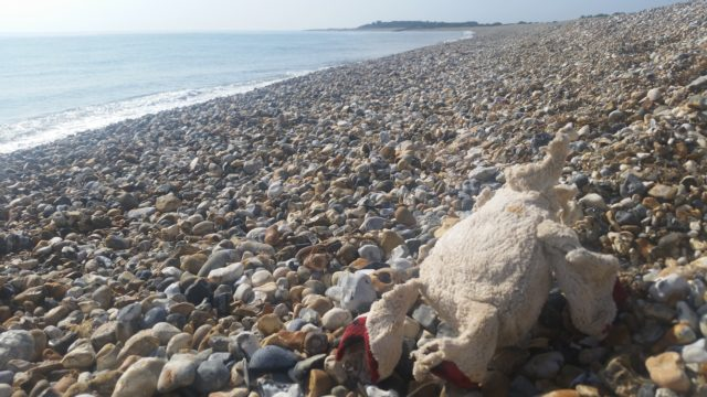 Odd items found on British beaches include a headless teddy bear (The Plastic Tide/PA)