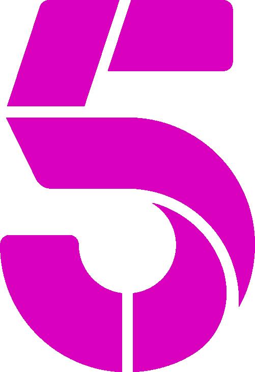channel 5 announces 2 gender pay gap the irish news