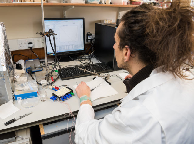 Luca Lipani, a PhD researcher, is part of the team which has developed a wearable patch which can monitor blood glucose  (University of Bath/PA)