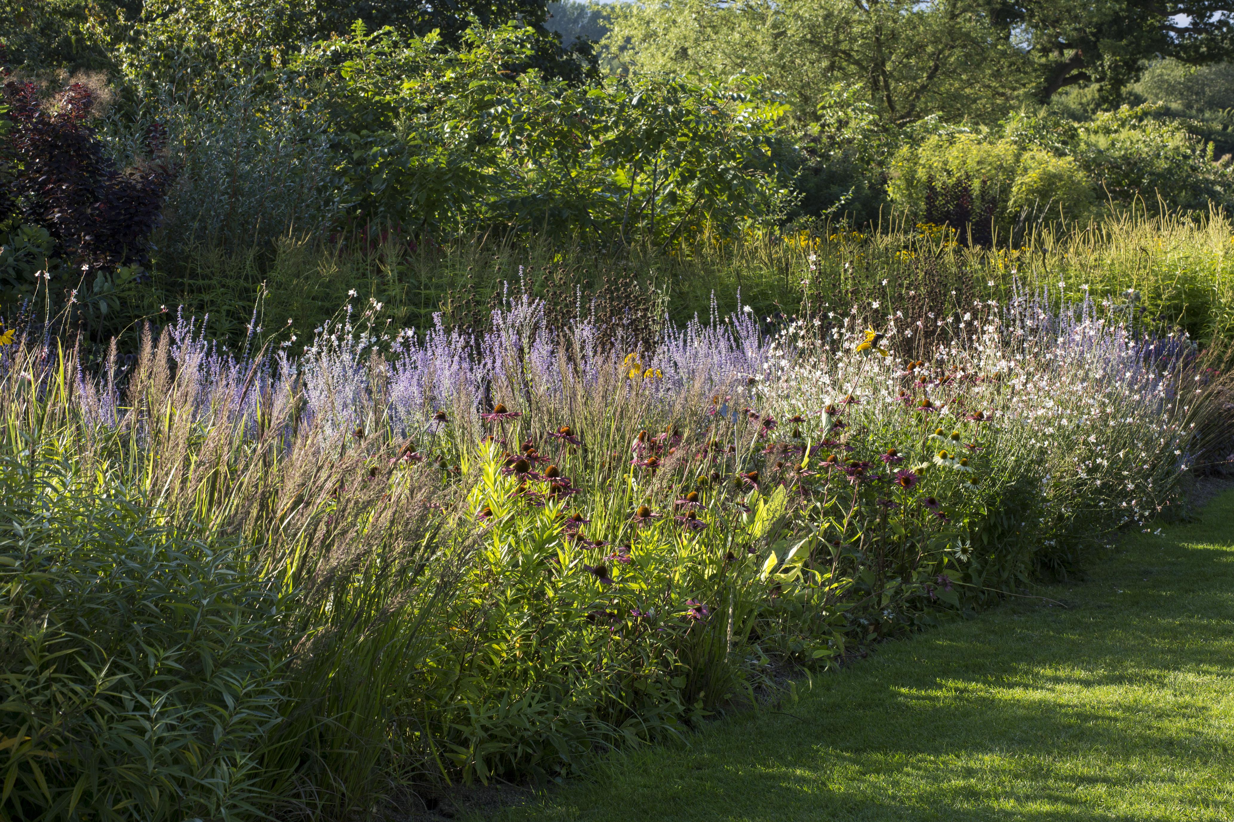 5 of top naturalistic garden designer Piet Oudolf's ...