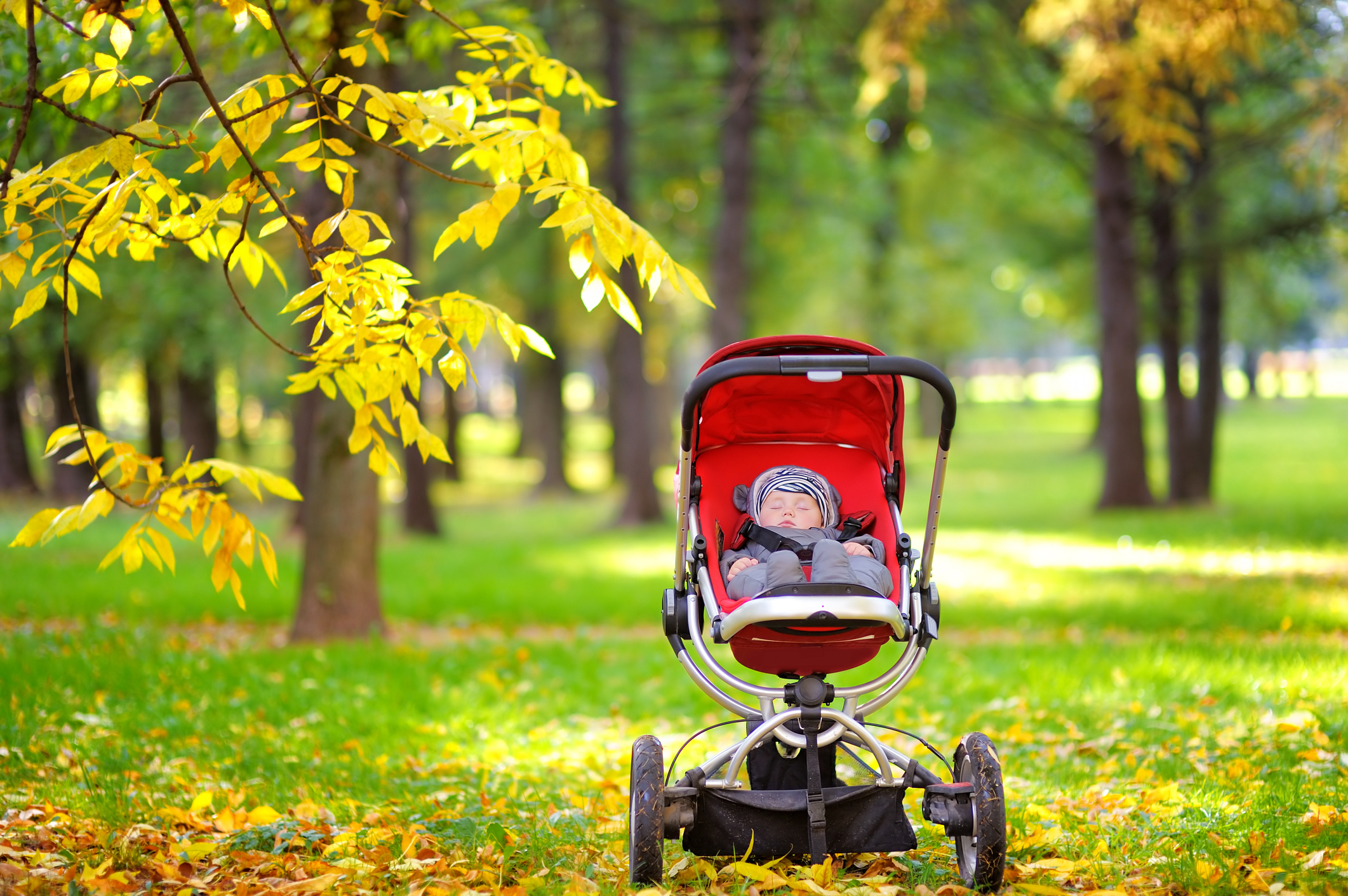 A baby in a pram in a park (Thinkstock/PA)