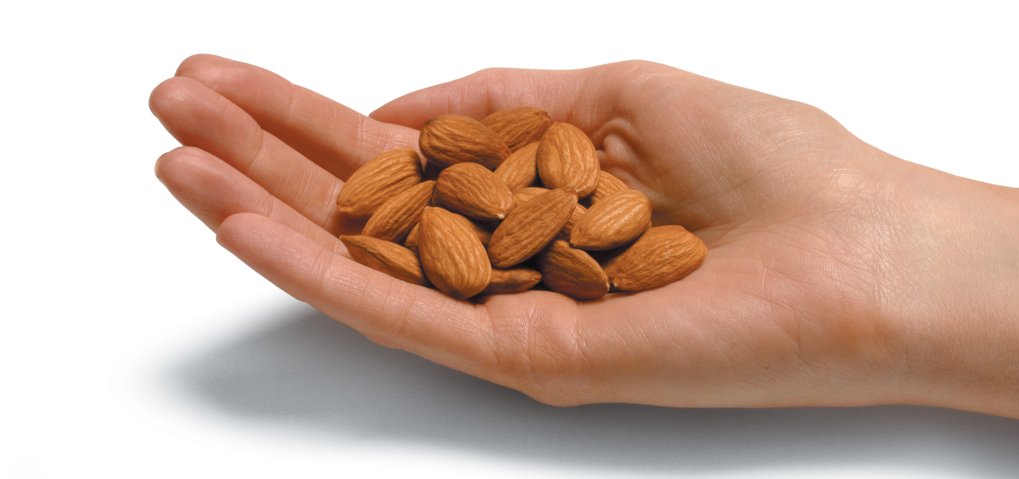 hand holding almonds