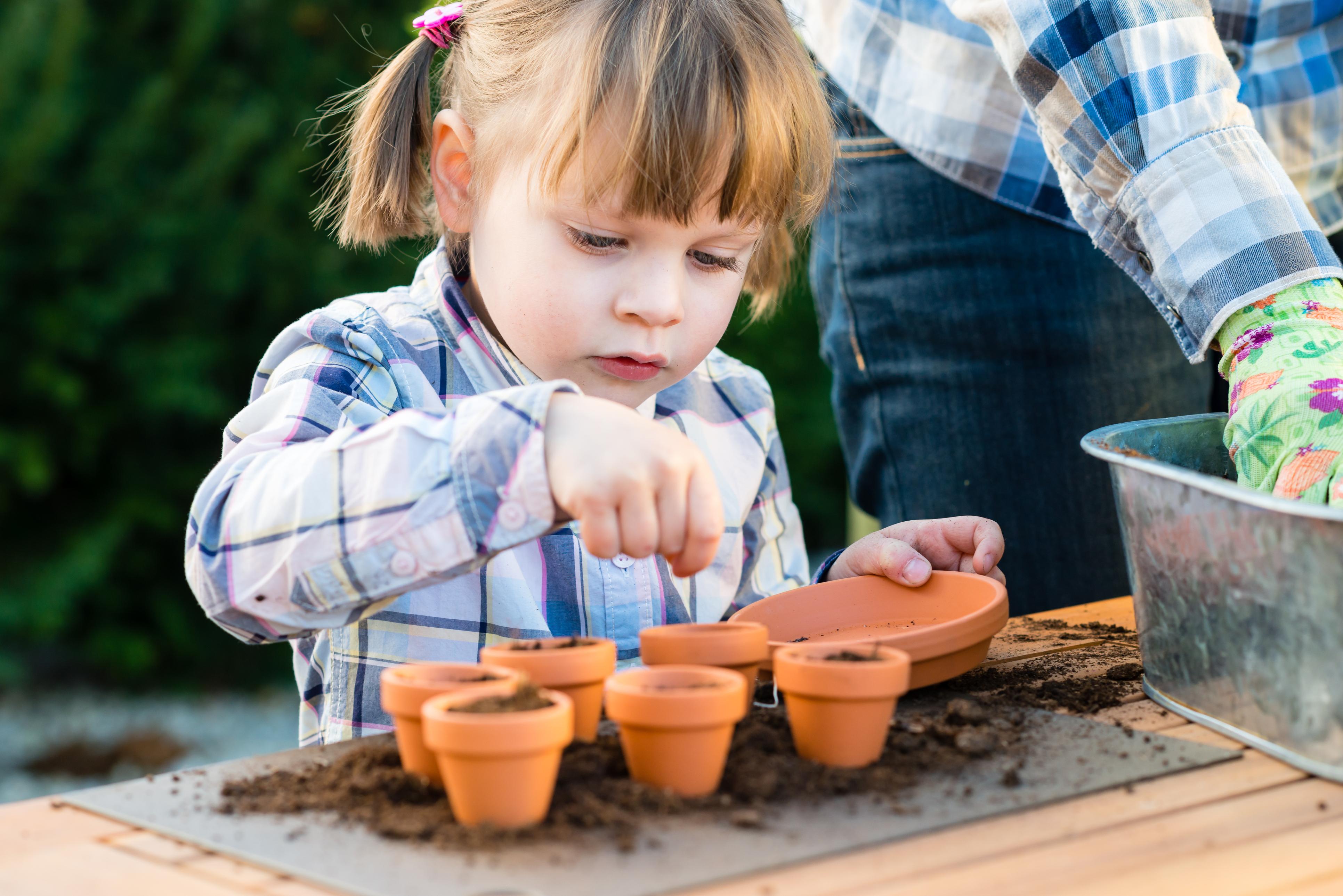 Get them growing (Thinkstock/PA)