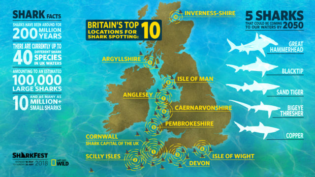 Warming UK waters will attract newer shark types