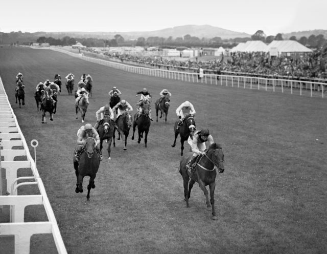 Ribocco won the 1967 Irish Derby for Fulke Johnson Houghton and Lester Piggott