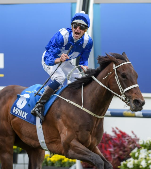 Winx is on a 30-race unbeaten streak