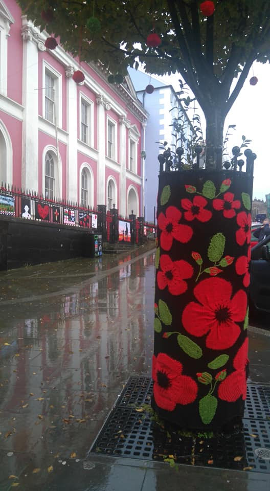 Knitted remembrance poppies decorate trees, railings, bollards and bus stops in haverfordwest ahead of Armistice Day