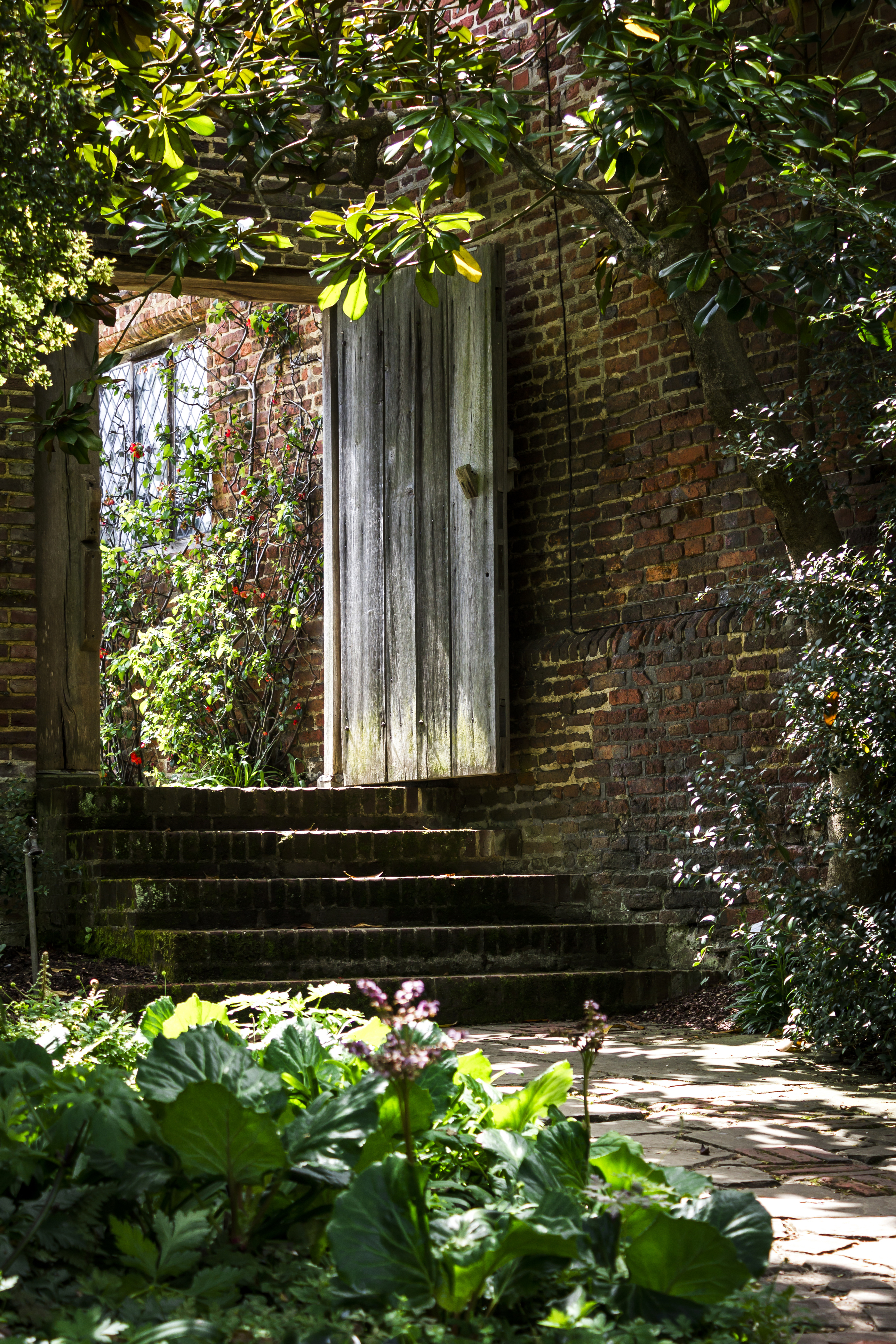 Shaded areas require shade-loving plants (iStock/PA)
