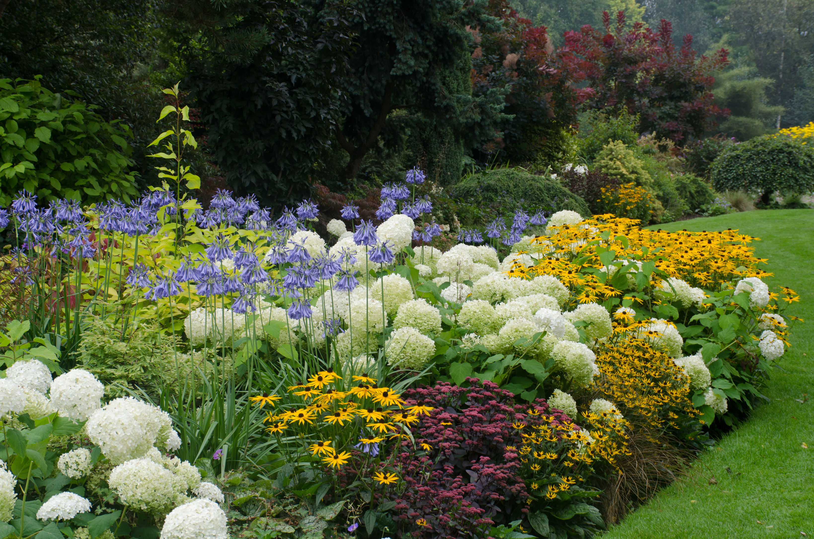 Soften gardens with curved borders (iStock/PA)
