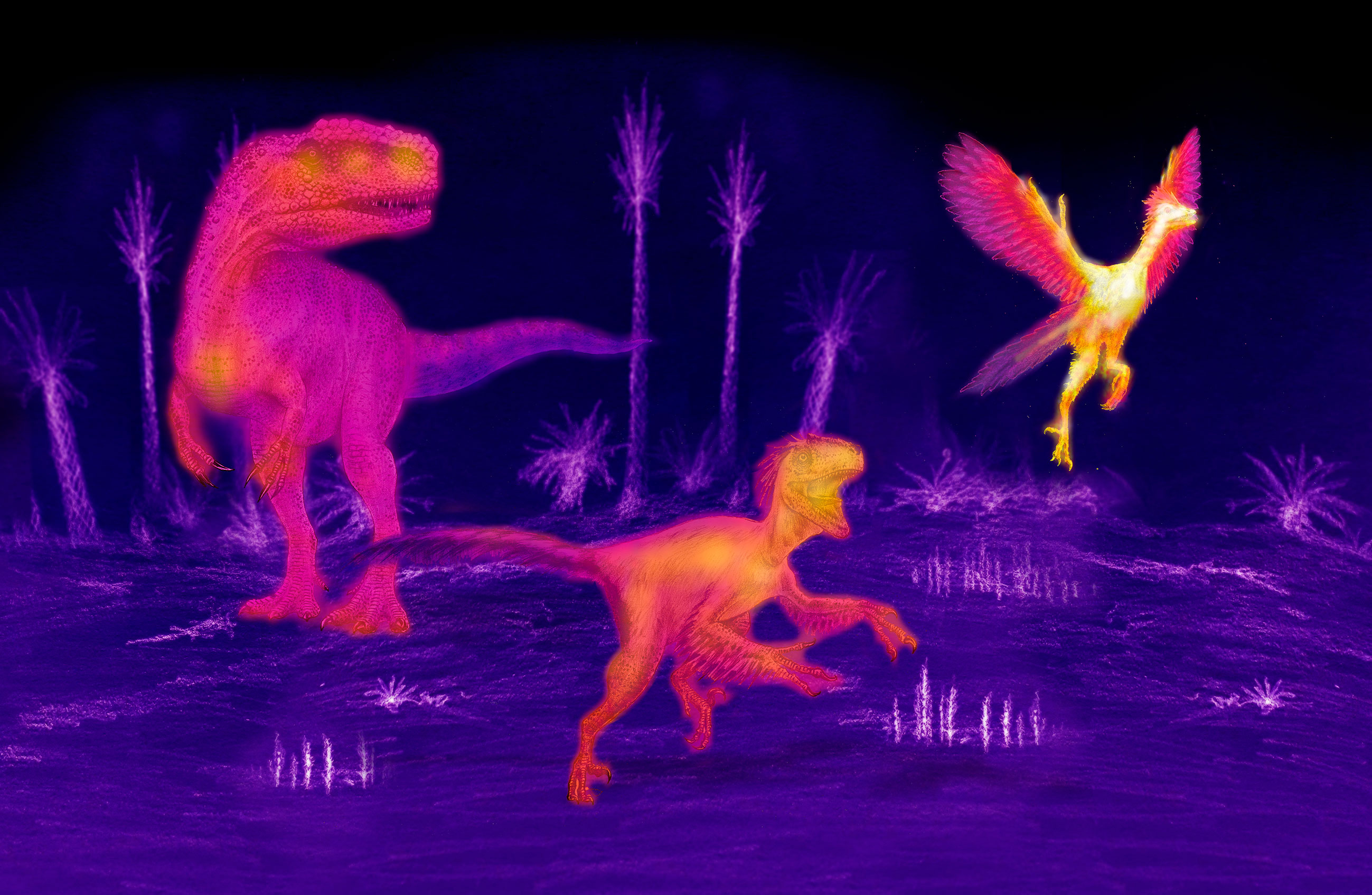 'Shrinking' dinosaurs allowed birds to evolve as warm-blooded creatures – study