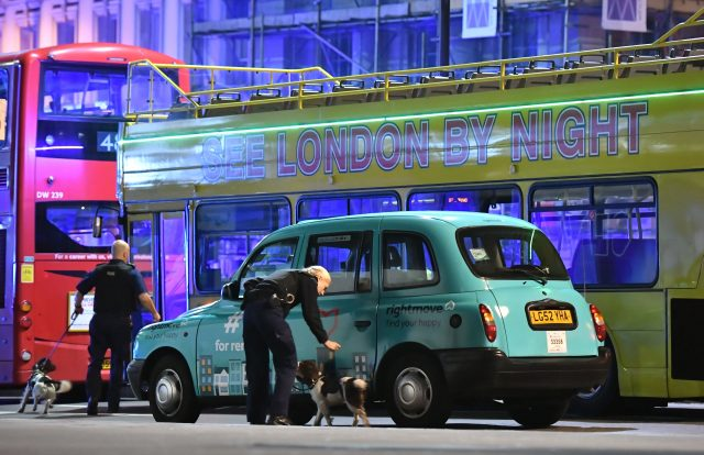 Police sniffer dogs on the scene on London Bridge