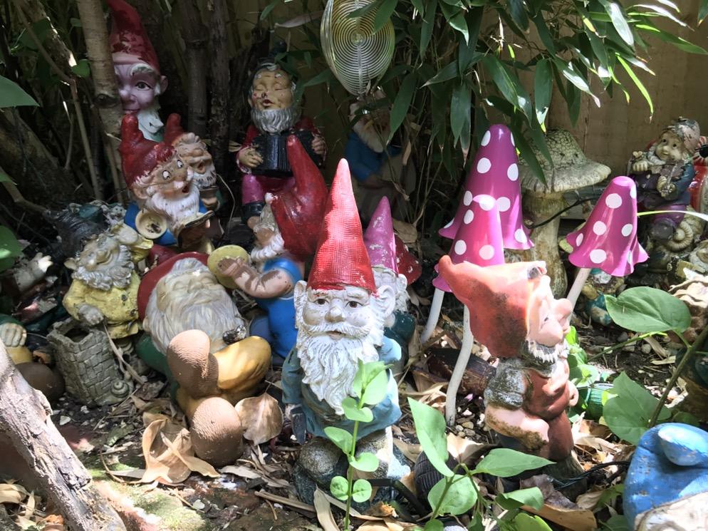 Gnomes (Hannah Stephenson/PA)