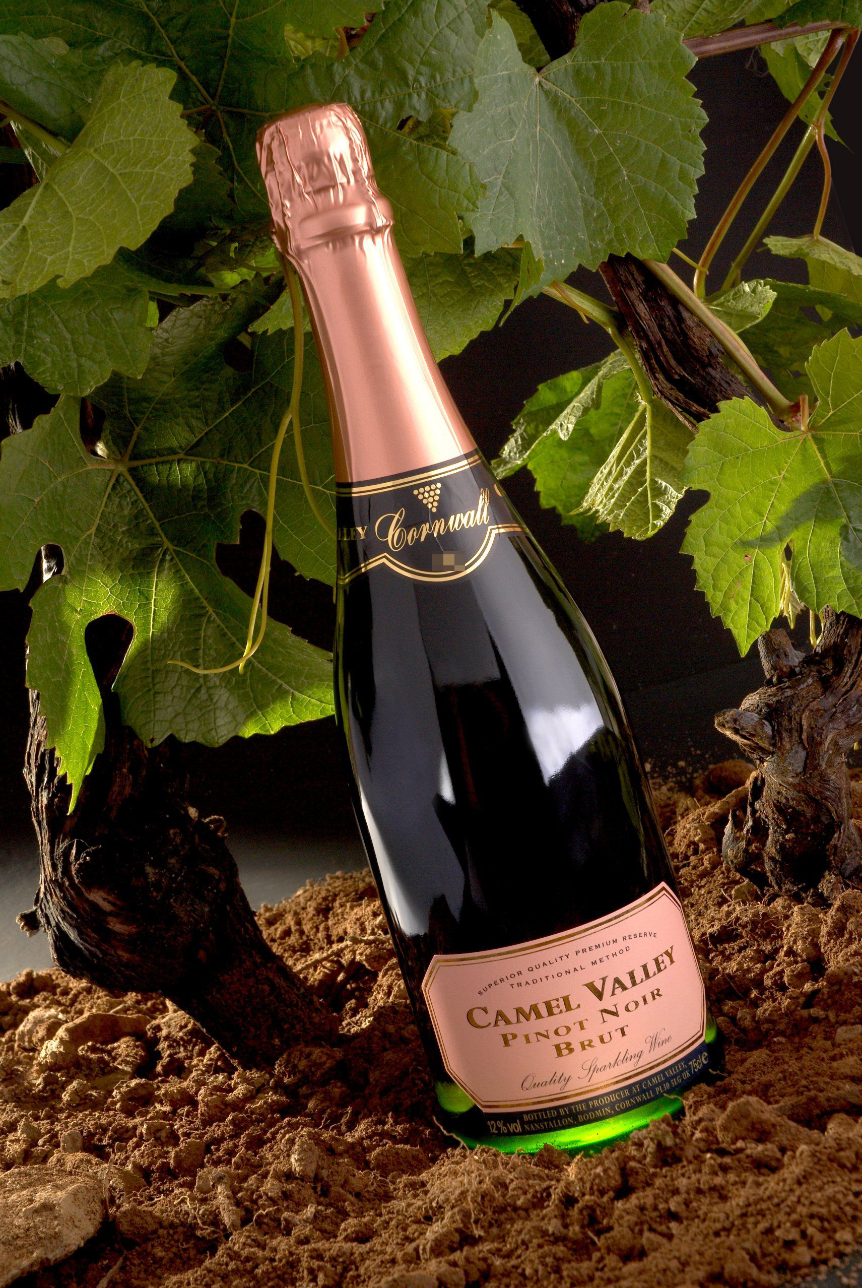 Camel Valley Rose Brut English Sparkling Wine