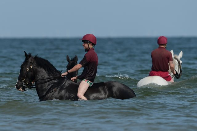 It was time for a swim for the parade horses (Joe Giddens/PA)