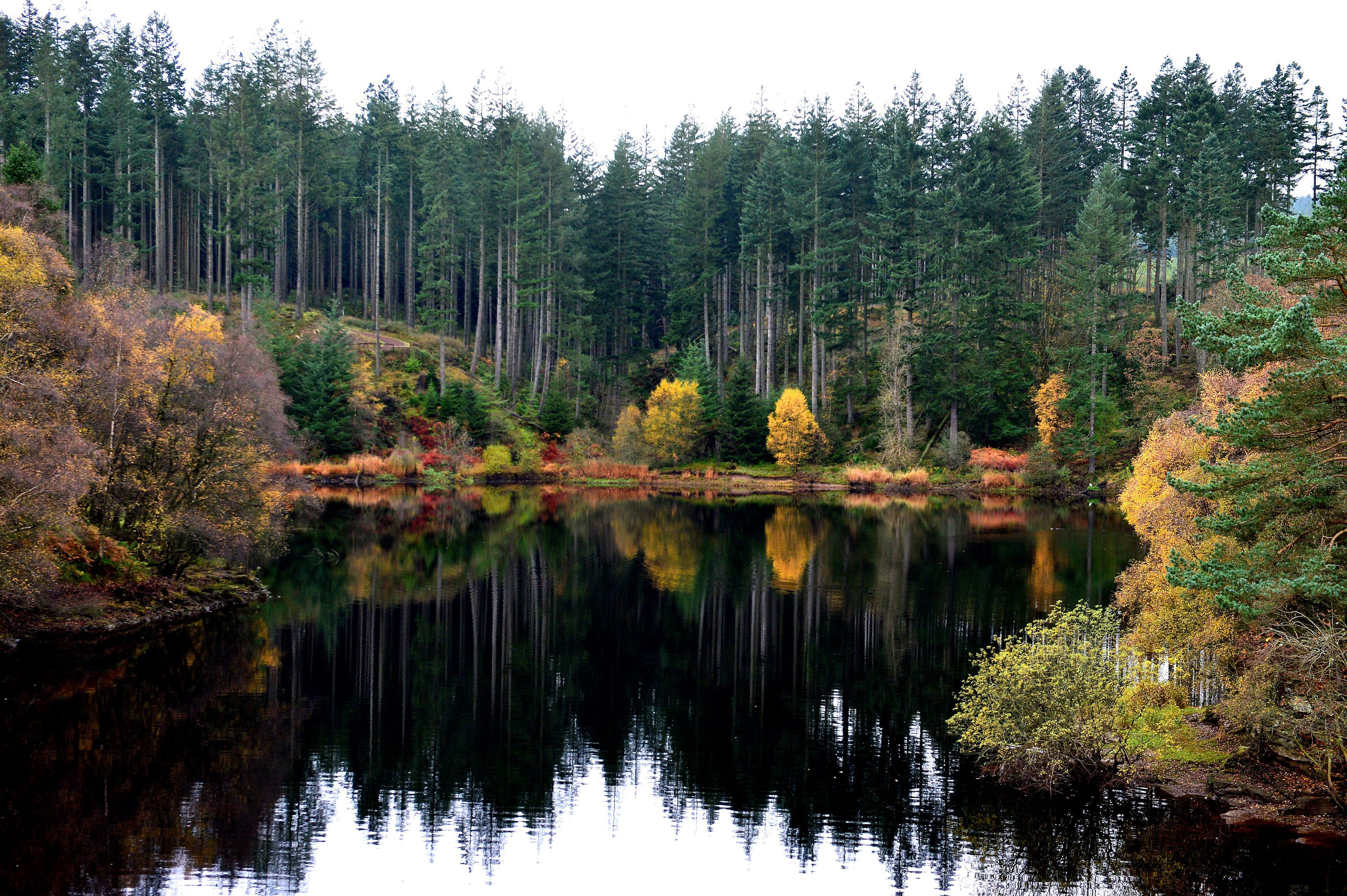 Kielder Water and Forest Park in Northumberland.