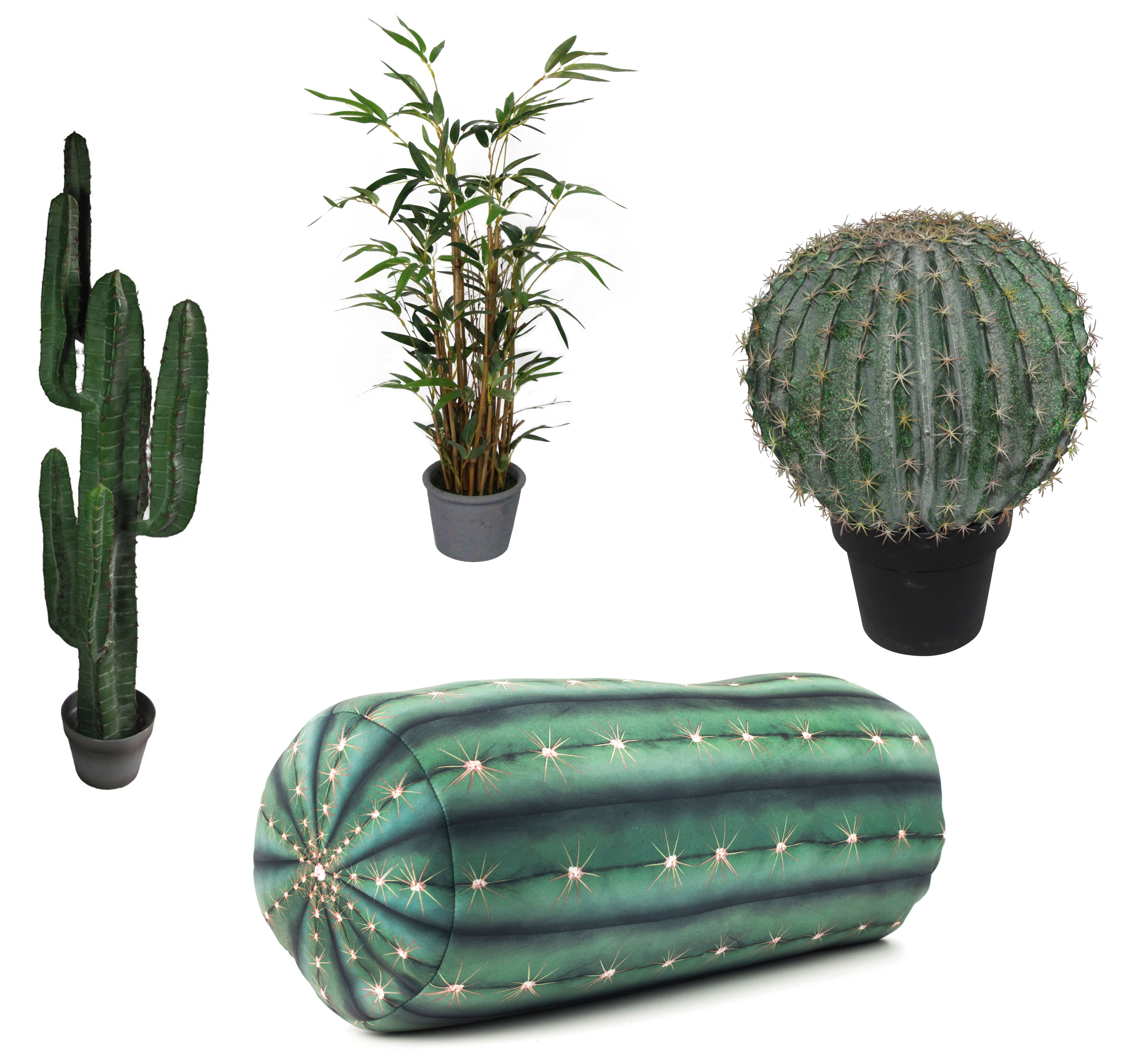 Hothouse pics: (Clockwise from left) Small Yuha Cactus, £85, Abigail Ahern/EDITION at Debenhams; Gisela Graham Safari Collection Faux Bamboo Plant, £30.99, The Contemporary Home (available July 28); Large Goldenball Cactus, currently reduced to £78 from £98, Abigail Ahern/EDITION at Debenhams, and Cactus Pillow, £17.50, Cotswold Outdoor (Abigail Ahern/Debehhams/The Contemporary Home/Cotswold Outdoor/PA)