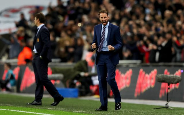 England manager Gareth Southgate now cheering goals from the sidelines (PA)