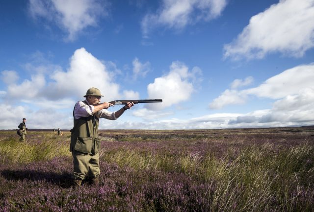 The economic contribution to national and local economies from grouse shooting is expected to be significant (Danny Lawson/PA)